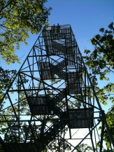 Trees recently topped so the view was spectacular from this fire tower!