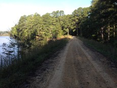The levee at the east end of Cub Creek Lake is both the trail and access road for hunting
