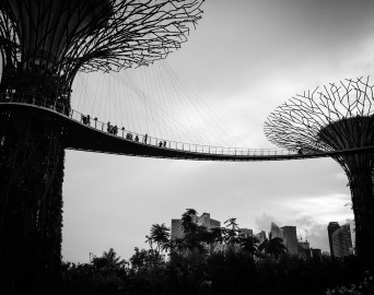 Cityscape and Gardens by the Bay.