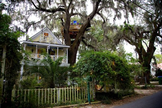 Our Treehouse accommodations  in Savannah GA on our Southern college tour in Savannah Georgia and North and South Carolina with Carissa.