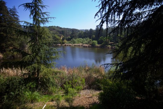 This is where they filmed scenes of Myers Lake from the Andy Griffith show back in the 50's
