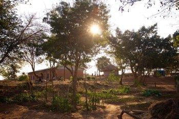 Zambia 9