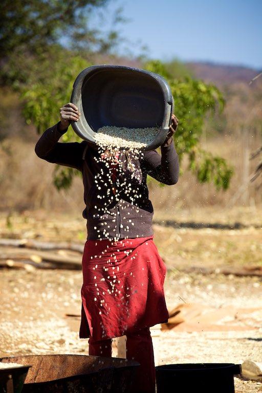 Zambia 23