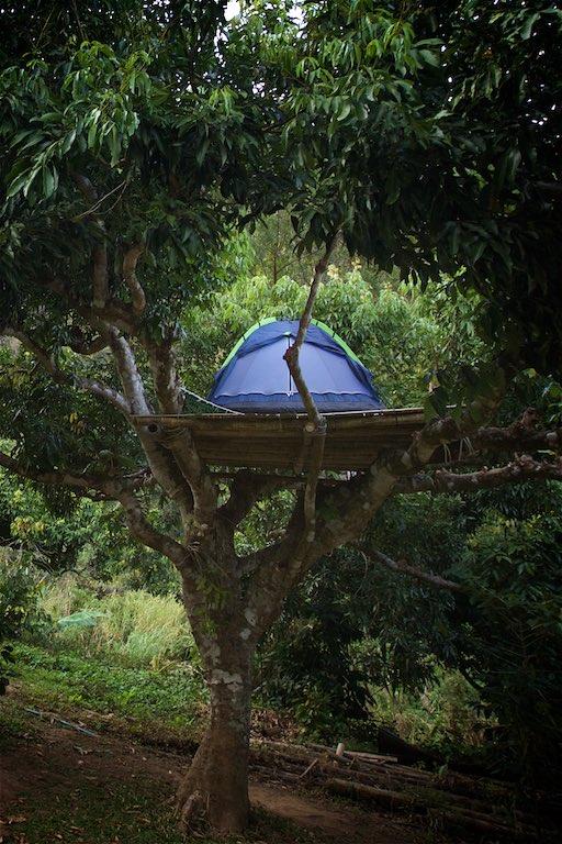 01b Phahee Village, The Acha Tribe 5