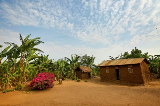 The Uganda countryside 41