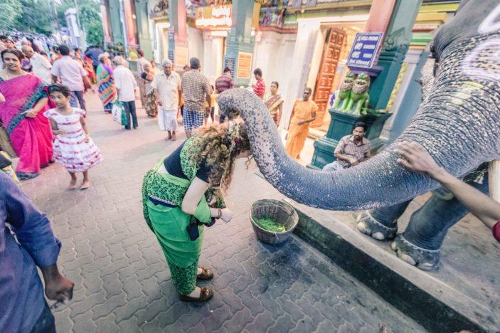 Pondicherry-23