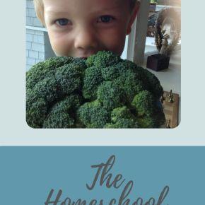 How to Create a Homeschool Diet