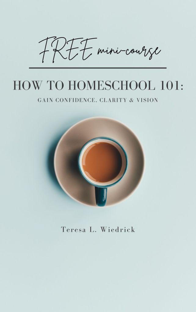 new how to homeschool 101 mini course