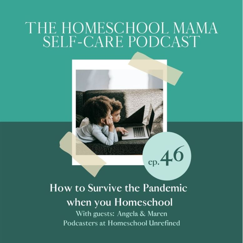 How to Survive the Pandemic when you Homeschool