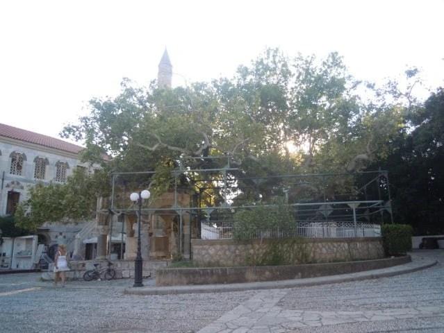 Cosa vedere nella città di Kos