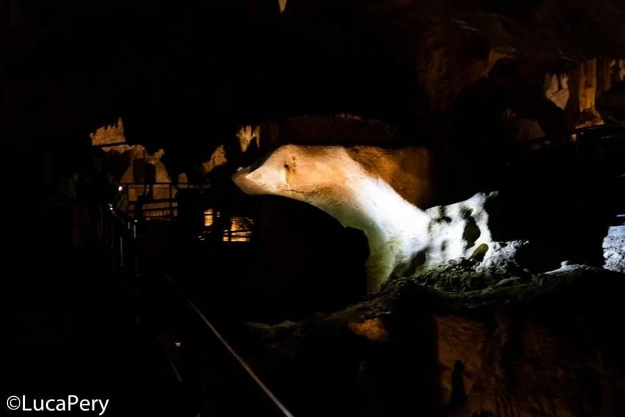 Visitare le Grotte di Frasassi