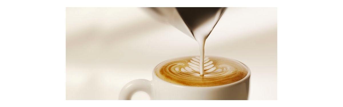 El café Capuchino perfecto: características, cómo prepararlo y una taza para capuchino