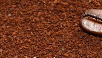 Preguntas sobre el café: beneficios del café