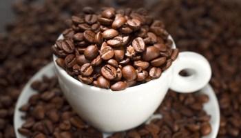 cómo moler el café