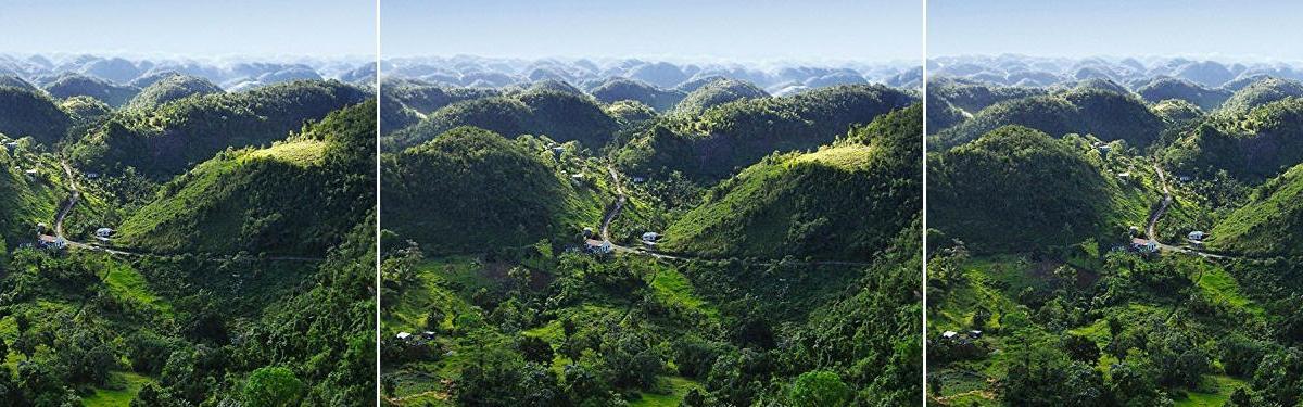 Café Jamaica Blue Mountain: 4 razones por las que es tan bueno y tan caro
