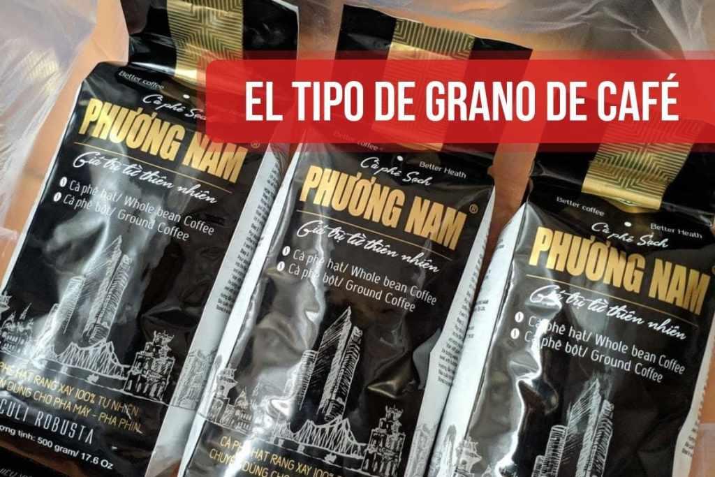El tipo de grano de café