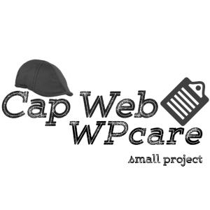 WPcare-smprj-logo-w-cap-clipboard-600x600