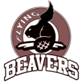Flying Beavers
