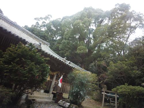 3.多久頭魂神社