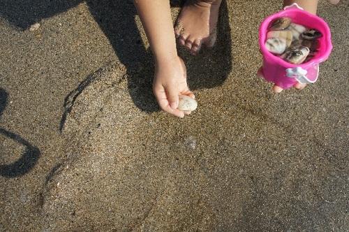 ときめきビーチ-潮干狩り01