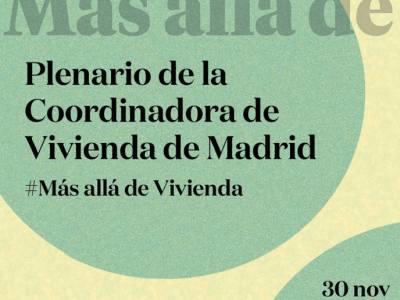 PlenarioCoordViviendaMadrid-30N