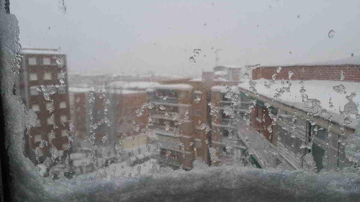 carabanchel2021-nevada