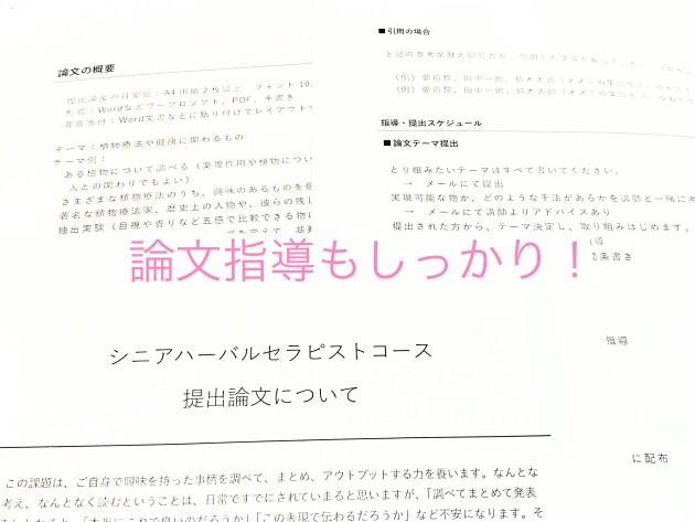 【石橋雑記】楽しくてためになる論文指導