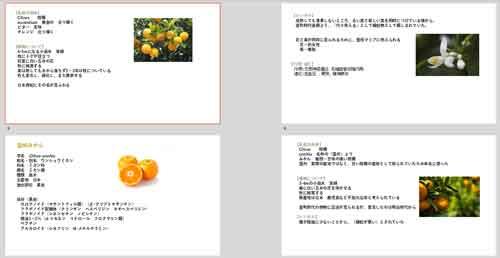 【無料オンライン講座】ビターオレンジと温州みかん ※終了しました