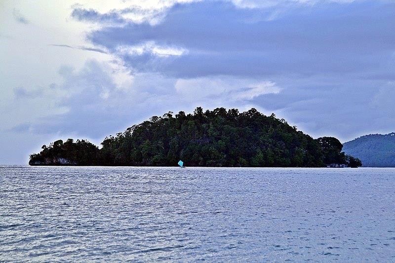 turtle island, barobo, surigao del sur