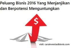 Peluang Bisnis 2016 Yang Menjanjikan dan Berpotensi Menguntungkan