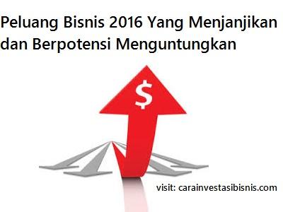 peluang usaha 2016 yang menjanjikan dan menguntungkan