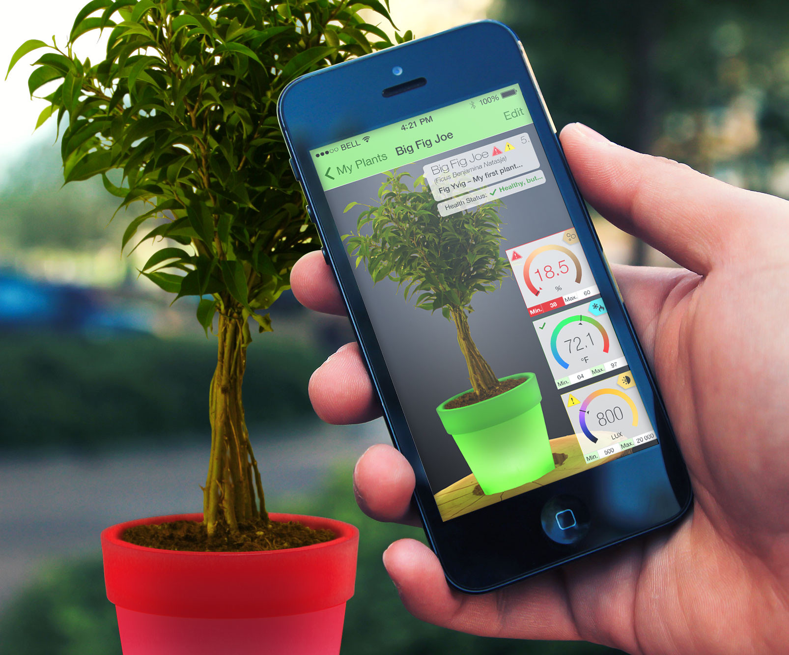 plant caring app