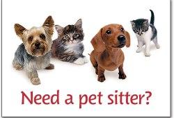 5 Ide Bisnis Pecinta Binatang yang Menjanjikan