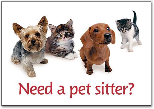 Pet sitter Hewan
