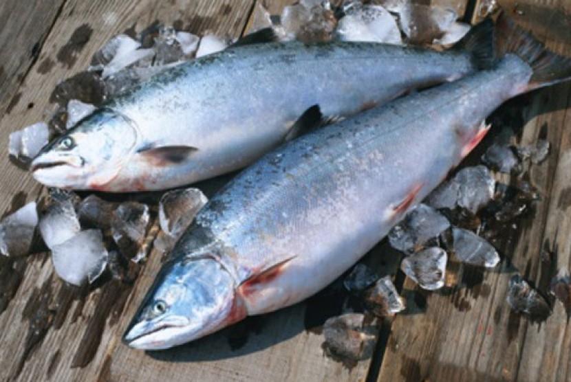 Budi daya Ikan Segar