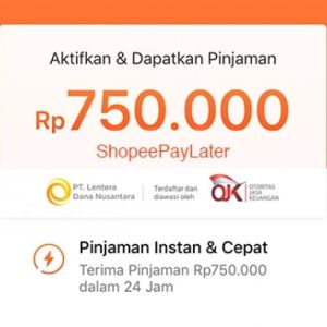 Shopee Pay Later