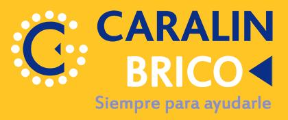 Caralin Brico