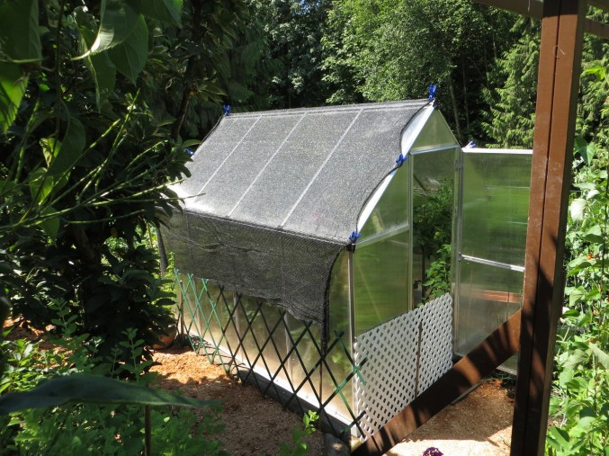 Greenhouse with shadecloth