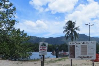 Crocodiles are found throughout waterways