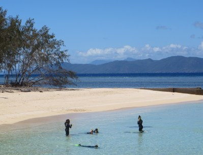 Snorkelling - another incredible way to experience the marine life