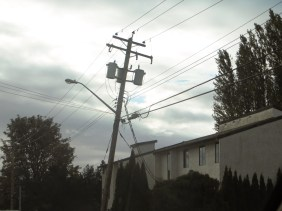 Stay clear of fallen hydro lines