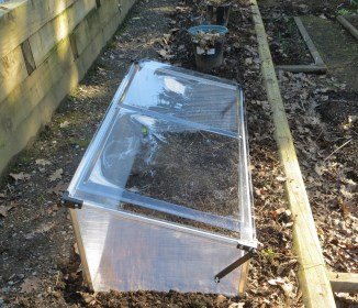 & room for a cold frame