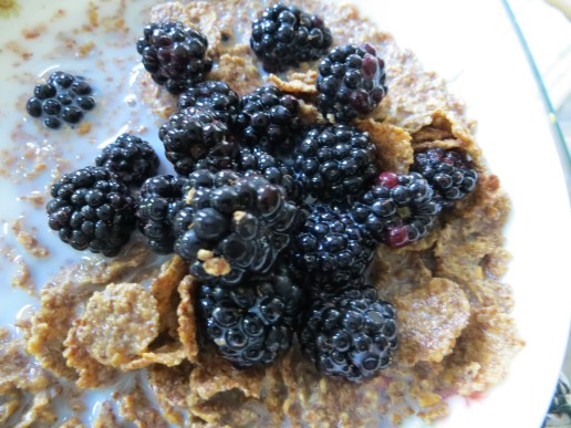 Blackberries on cereal
