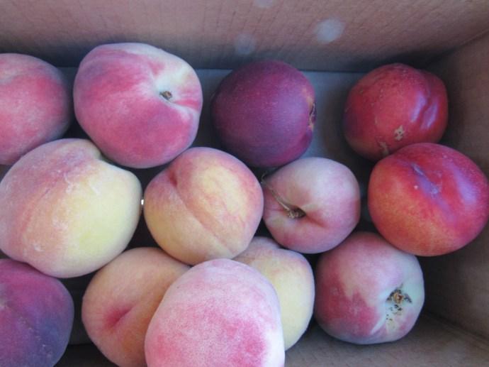 #2 organic peaches & nectarines