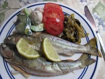 Fish, onions, organic potato salad & tomatoes