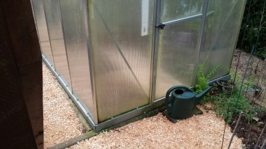 Greenhouse mulched inside & out