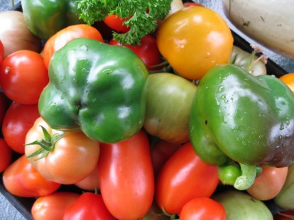 Just picked organic garden veggies