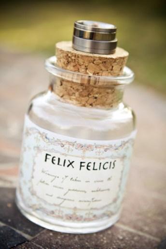 harry-potter-wedding-2-felix-felicis