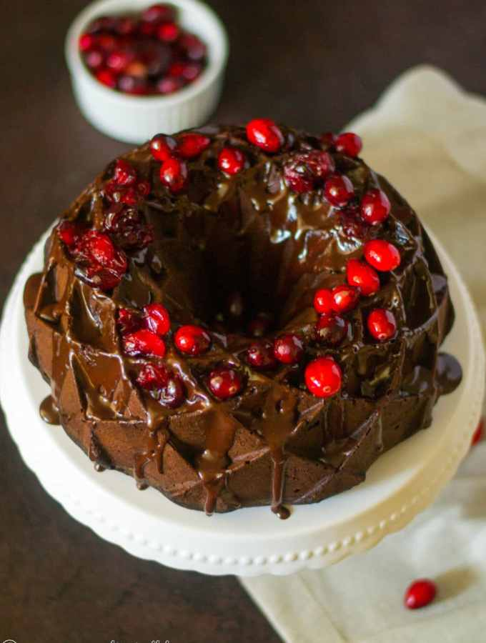 Chocolate Cranberry Bundt Cake