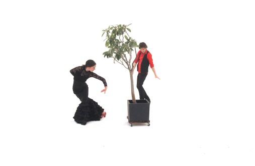Danza bionica magic Hönevo